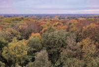 Blick von der Spitze des Aussichtsturms Richtung Hüls im Westen