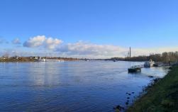Blick Rheinabwärts in Richtung Bonn