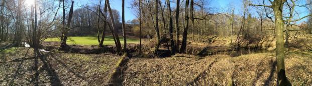 Waldlandschaft an der Göhl