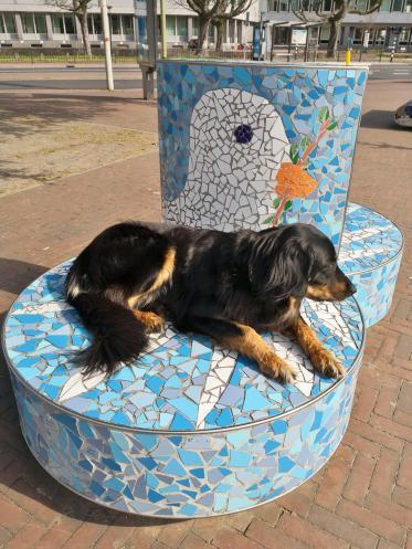 Friedenstaubensitzplatz vor dem Friedenspalast