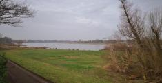 Blick Richtung Düsseldorf am rechten Rheinufer