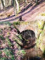 """Eingang zum ehemaligen Heinrichtstollen des Bergwerks """"Altwerk"""""""