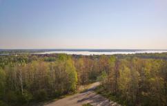 Blick zum Große Goitzsche See