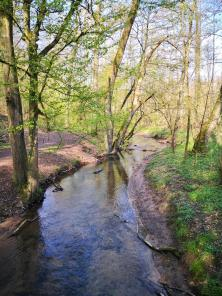 Der Wiembach durchzieht das Gelände des NaturGutes Ophoven