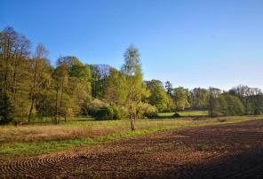 Landschaft bei Wiesenburg/Mark