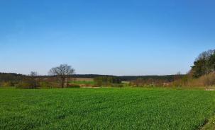 Blick in die leicht gewellte Landschaft des Hohen Flämings