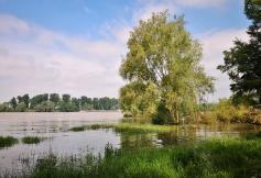 Überflutungsflächen bei Urdenbach