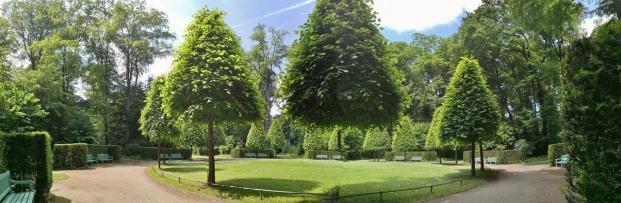 Panoramabild mit schwebendem Baum aus dem Schlosspark Benrath