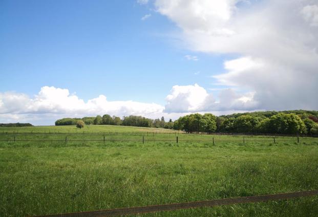 Landschaftsbild am Steinberg