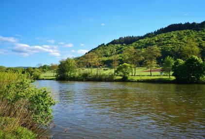 Blick vom Saarradweg auf den Fluss