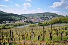 Blick von Luxemburger Seite hinüber ins französische Sierck-les-Bains