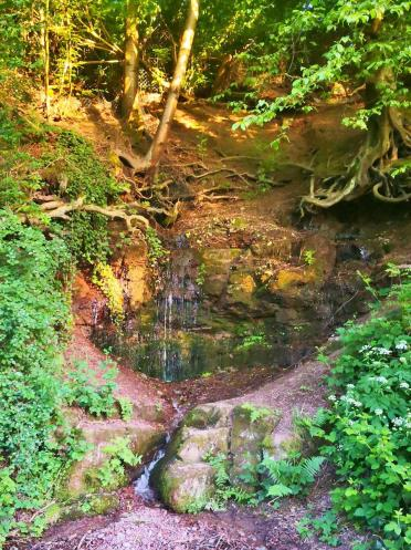Hier läuft das Wasser direkt aus dem Hang