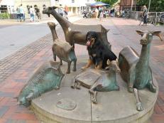 Doxi am Zickendenkmal