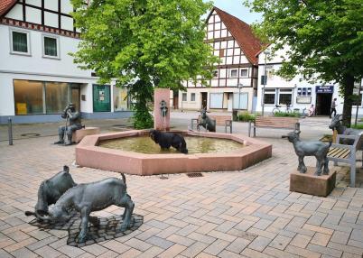 Doxi labt sich am Ziegenbrunnen vor dem Marktplatz