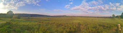 Panoramablick in die Heide zwischen Wilsede und Undeloh