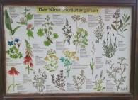 Infotafel am Klosterkräutergarten