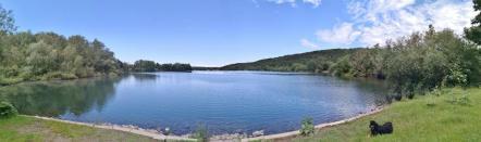 Panoramabild vom Vienenburger See