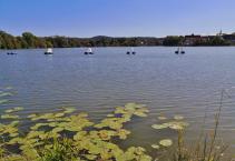 Der See wird auch für das Freibad genutzt