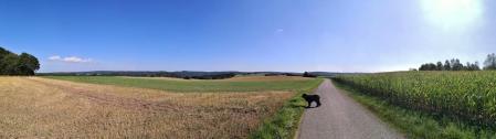 Panoramabild von der Hochfläche bei Herhahn