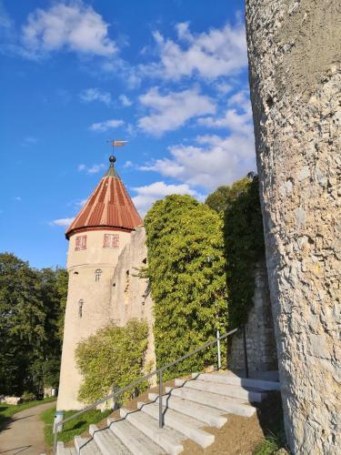 Stadtseite der Honburg