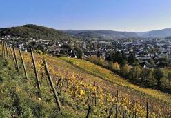 Blick aus den Weinbergen hinunter nach Bad Hönningen