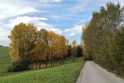 Abstieg zum Gut Coenes am Hasselbach