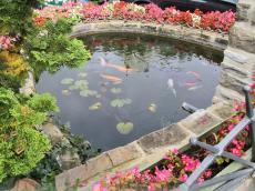 Brunnen mit Fischen am Marktplatz von Rhöndorf