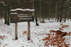 Der Staatsforst Elsenborn an der Grenze zu NRW. Auf diesem gesperrten Gelände im deutschsprachigen Teil von Ostbelgien befindet sich der Truppenübungsplatz.
