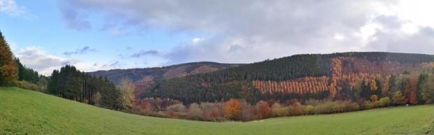 Panoramabild vom Rurtal oberhalb von Hammer