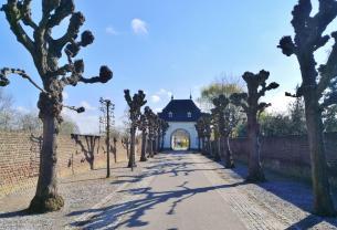 Allee zur Kloster-Basilikia