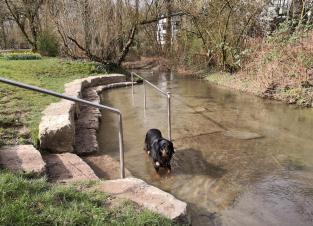Wassertretstelle in der kleinen Düssel