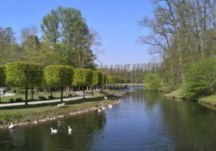 Zahlreiche Wasservögel bevölkern die Wasserflächen im Park
