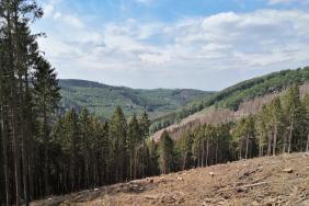 Blick in Richtung des Tals des Sundwiger Baches