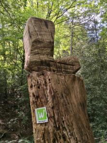 Start der Sauerländer Waldroute in den Rupensiepen von Iserlohn