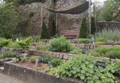 Kräutergarten im Schlosspark