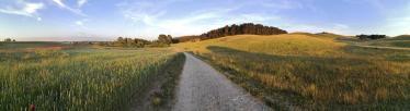 Panoramabild vom Fahrradweg Richtng Gager