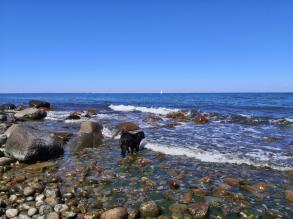Küstenabschnitt am Uferweg