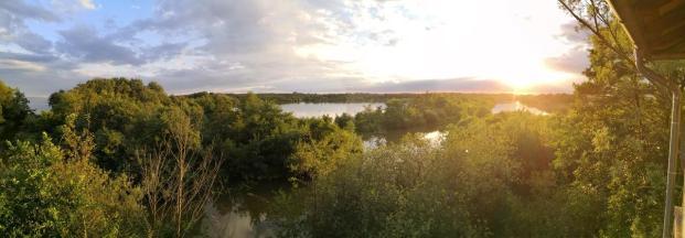 Panoramaaufnahme vom Naturschutzgebiet am Nordrand des Plauer Sees beim Moorochsen