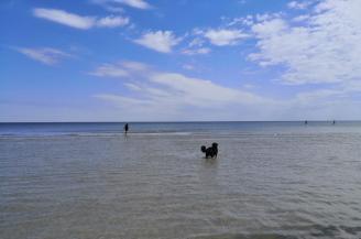 Heike und Doxi stapfendurch die flache Uferzone