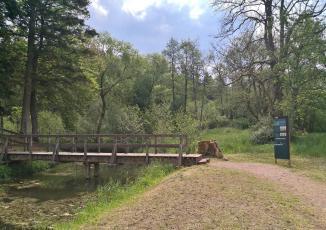Wassergraben um die frühere Motte Zehnbachhaus