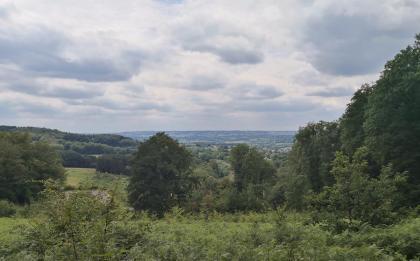 Blick in die belgischen Ardennen