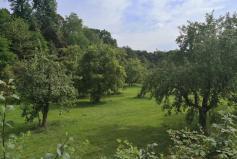 Obstgarten von Schloss Morsbroich