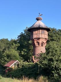 Der Jungstorch auf dem Wasserturm simuliert schon einmal das Fliegen