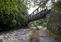 Immer wieder wechselt die Elstertalbahn die Flußseite