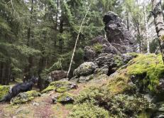 """Felsformation """"der steinerne Mönch"""""""
