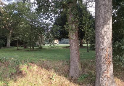 Blick durch den Park zum Schloss Dyck