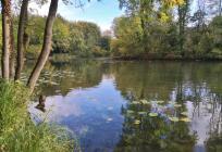 Teich am Wassergraben von Haus Horst