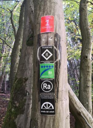Hier laufen unter anderem der Wald-Wasser-Wolle-Weg und der Tuchmacherweg parallel