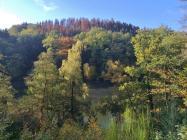 Landschaft an der Wupper