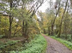 Fahrrad- und Wanderweg an der Niers